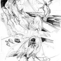 """ The Crow """
